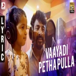 Vaayadi Petha Pulla