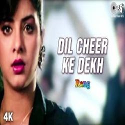 Dil Cheer Ke Dekh (Jhankar Beats)