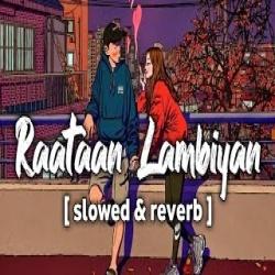 Raatan Lambiyan - Shershah (Slowed and Reverb) Lofi Remix