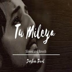 Tu Mileya Lofi Mix (Female Version)
