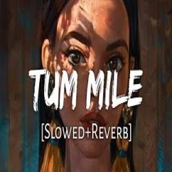 Tum Mile Lofi Remix (Slowed and Reverb)